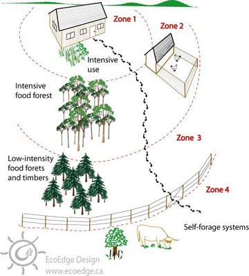 permaculture_zones