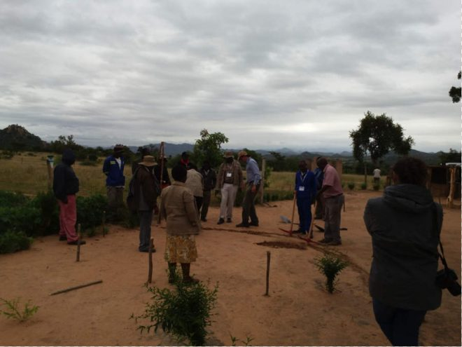 Brad Lancaster and training participants making a boomerang swale for a lemon tree at a World Vision mother demonstration plot.