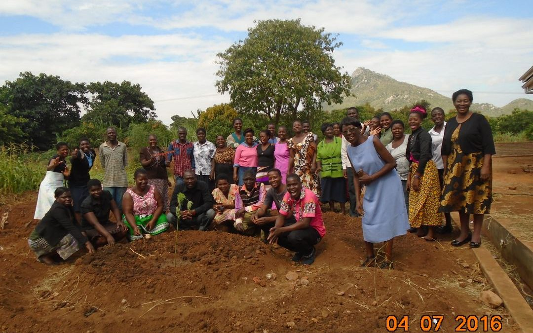 Kusamala's new consultancy in Kasungu