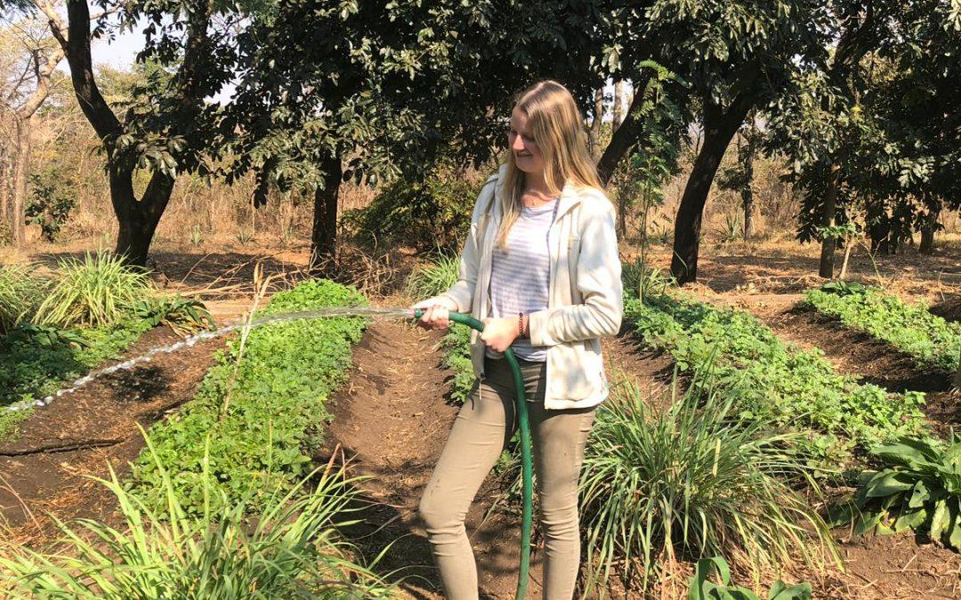 Eleanor Howard: Volunteering experience at Kusamala